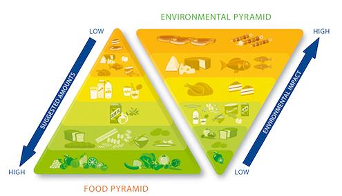earthsave-foodpyramid
